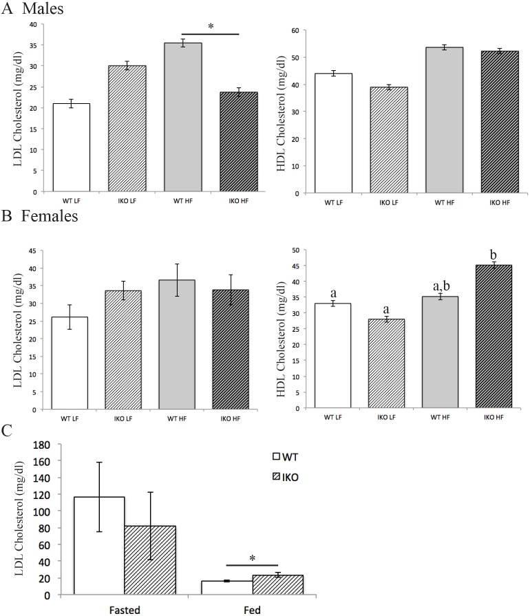 Lipoprotein cholesterol levels are affected by loss of CAV1 in the intestinal epithelia. (A,B) Male CAV1 IEC-KO (IKO) mice are protected from HFD-induced increase in fasted plasma <t>LDL</t> cholesterol ( n =6-10, mean±s.e.m, two-way ANOVA, significant interaction between diet and genotype) (A), but female mice are not ( n =8-9) (B). Female CAV1 IEC-KO , but not WT, mice have higher fasted plasma <t>HDL</t> cholesterol on HFD than LFD. Mean±s.e.m, two-way ANOVA, groups with different letters are significantly different by post hoc testing. (C) CAV1 IEC-KO mice on CD have higher postprandial plasma LDL cholesterol than WT mice. Mean±s.e.m, Student's t -test, * P