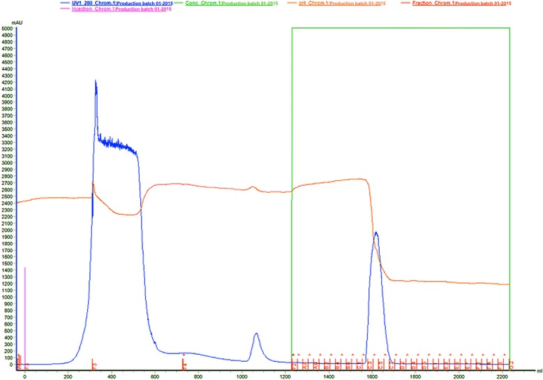 Affinity liquid chromatography of Crotalus durissus terrificus crude venom with Benzamidine-Sepharose 6B resin (column AxiChrom 100/300® (100 mm × 300 mm × 350 mL). The column was equilibrated with 0.05 M Tris-HCl pH 7.4 (buffer 1). Sample: 15 g of crude venom was suspended in buffer 1. The sample elution was carried out with 525 mL of buffer 1 followed by 525 mL of 0.05 M Tris-HCl/0.5 M NaCl pH 7.4 (buffer 2) and 1,050 mL of 0.02 M glycine pH 3.2 (buffer 3), at flow rate 10 mL/min, and collected 25 mL/tube. Absorbance 280 nm