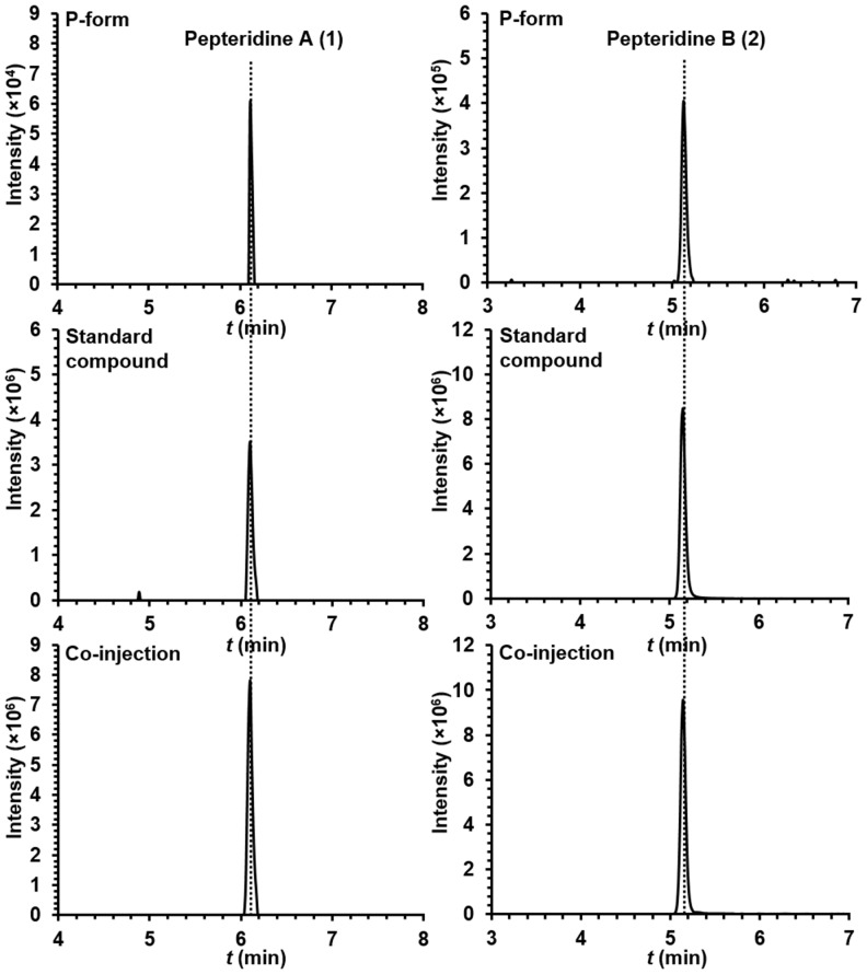 Extracted ion counts chromatograms from <t>LC/HR-ESI-QTOF-MS</t> analysis of pepteridines A (left panel) and B (right panel) from the butanol extracts of P-form culture broth (top), standard compounds (middle), and co-injection (bottom). DOI: http://dx.doi.org/10.7554/eLife.25229.027