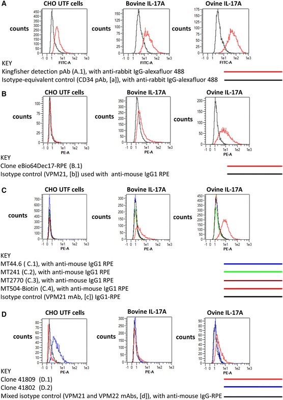 Evaluation of commercial antibodies for the intracellular detection of recombinant bovine and ovine IL-17A. The eight commercial antibodies listed in Table 1 were tested against fixed, permeabilised untransfected (UTF) CHO cells and CHO cells transfected with cDNA encoding bovIL-17A or ovIL-17A for their capacity to detect intracellular recombinant IL-17A by flow cytometry. Results are shown for one polyclonal antibody (pab) produced against bovIL-17A ( A ) and seven monoclonal antibodies (mabs) produced against human or mouse IL-17A ( B – D ). Profiles of the relevant control antibodies listed in Table 2 are included in the overlapping histograms. Events were acquired on the MacsQuant according to the gating strategy described previously (in brief) and shown in Additional file 2 . Line colours representing different antibody treatments are given in parentheses: A Primary rabbit anti-bovine IL-17A pab PB0274B-100 at 1 μg/mL (A.1, red) or negative control primary anti-bovine CD34 pab (in-house) at an estimated 1 μg/mL equivalent (a, black) then detected with a secondary goat anti-rabbit alexafluor 488 at 1 μg/mL; B Directly conjugated mouse anti-human IL-17A eBio64DEC17-phycoerythrin (PE) mab (IgG1) at 2.5 μg/mL (B.1, red) and control IgG1 VPM21 mab (in-house) at an estimated 2.5 μg/mL equivalent (b, black) and detected with goat anti-mouse PE at 1 μg/mL; C Primary mouse anti-human IL-17A mabs MT44.6 (C.1, blue), MT241 (C.2, green), MT2770 (C.3, brown) and MT504 (C.4, red) [all IgG1] at 0.5 μg/mL and control IgG1 VPM21 mab (in-house) at an estimated 0.5 μg/mL equivalent (black), all detected with goat anti-mouse PE at 1 μg/mL; D Primary mouse anti-human IL-17A mabs #41809 (D.1, red) (IgG2b) and #41802 (D.2, blue) (IgG1) at 2.5 μg/mL and a mixture of control mabs VPM21 (IgG1) and VPM22 (IgG2b) at an estimated 2.5 μg/mL equivalent (d, black), all detected with goat anti-mouse PE at 1 μg/mL.