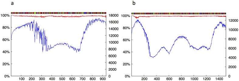 Sonication-MicroAssembly (SMA) method for high throughput matK reference barcoding. Amplicons of the plant DNA barcode locus matK were sonicated and tag-labelled for each specimen prior to sequencing on the Illumina V3 MiSeq platform. Sequences sharing the same species tag label were re-assembled. The pipeline used by the freeware removes the tag labels and aligns all sequences passing filter along a sliding window until the two sequences can be merged. The panel ( a ) above shows an example readout indicating the consensus barcode sequence across the barcode region (upper bar, where black = G; green = A; red = T and blue = C), percent consensus agreement for all reads passing filter across the 950 bases of matK (red line) and the number of individual sequences contributing to each base position (blue line) for Callitris rhomboidea . Panel ( b ) shows the same plot for near gene-length ( > 1,400 bases) reads of matK recovered for Rytidosperma caespitosa (M3).