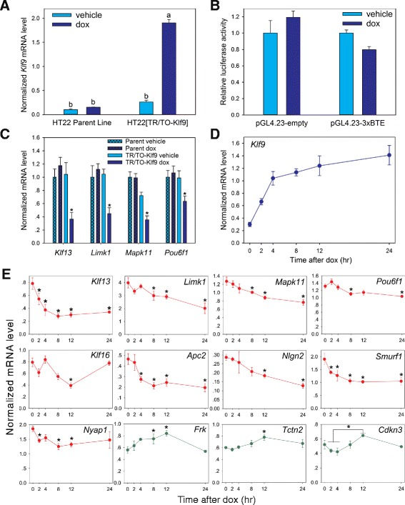 Identification of Klf9-regulated genes in HT22 cells by RNA-sequencing. a Treatment of HT22 [TR/TO-Klf9] cells with doxycycline (dox; 1 μg/ml) for 8 h increased Klf9 mRNA ~10 fold compared to vehicle treated cells, but had no effect in parent HT22 cells. The baseline Klf9 mRNA level did not differ between parent and [TR/TO-Klf9] line. Means with the same letter are not significantly different ( p