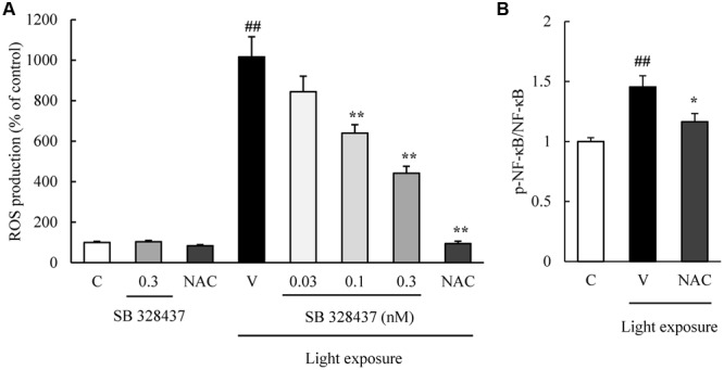 C-C chemokine receptor type 3 antagonist reduces the degree of reactive oxygen species (ROS) production induced by light exposure. (A) ROS production was measured by a ROS detecting probe. Light exposure induced the ROS production, and a CCR3 antagonist, SB 328437, reduced the production in a concentration-dependent manner. N -acetylcystein (NAC) was used for a positive control. (B) NAC treatment suppressed the phosphorylation of NF-κB induced by light exposure. Data are expressed as mean ± SEM ( n = 4 to 6). ## indicates P