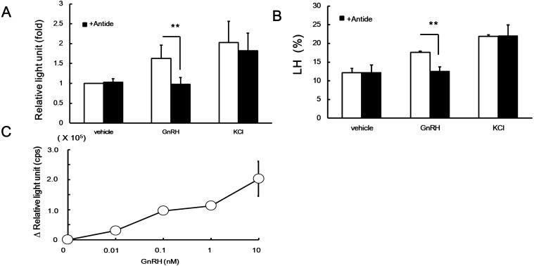Effect of antide on GnRH-induced Gluc activity (A), on GnRH-induced LH secretion (B), and the difference in Gluc activity in the absence and presence of antide (C) in LβT2 cells. (A) LβT2 cells were transfected with pCMV-Gluc2. Gluc-expressing cells were stimulated with 10 nM GnRH or 50 mM KCl for 2 h in the presence (closed column) or absence (open column) of 100 nM antide. Results show the relative value, where the relative light unit of the vehicle without antide is expressed as 1. Asterisks indicate that the Gluc activities are significantly different from those in the absence of antide. ** P