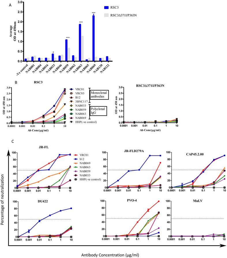 Identification of CD4-binding site antibodies. ( A ) ELISA with RSC3 and RSC3∆371I/P363N recombinant proteins. 12 BCN plasma samples were tested at a dilution of 1:100 to screen for the presence of CD4 binding site directed antibodies. Four of the 12 BCN plasma samples tested demonstrated significantly stronger binding to the wild type RSC3 protein as compared to the mutant protein. ( B ) RSC3 and RSC3∆371I/P363N specific antibodies were eluted from four BCN plasma samples which revealed the presence of CD4 binding site targeting antibodies (NAB033, NAB059, NAB063 and NAB069) using tosyl activated <t>MyOne</t> <t>Dynabeads.</t> ELISA was again performed with eluted IgG antibody (concentration 10 to 0.0001 μg/ml) with RSC3 and RSC3∆371I/P363N recombinant proteins at 2 μg/ml. Monoclonal antibodies VRC01, VRC03, B12 and 3BNC117 were used as positive controls and HHP as negative control. ( C ) Neutralization titer (IC 50 ) assay performed with eluted IgG antibody (concentration 10 to 0.0001 μg/ml) against four pseudoviruses and one mutant (JR-FL D279A). VRC01 and b12 MAbs were used as positive control bNabs against CD4BS and MuLV, as negative control.