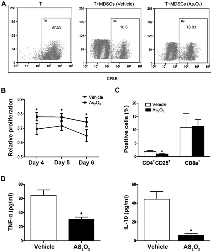 ATO impairs MDSCs immunosuppressive function. (A) MDSCs isolated from untreated or ATO-treated H22 mice were incubated for 5 days with CFSE-labeled naive T cells (MDSCs: T cell ratio=1:2). Effects of MDSCs on CFSE expression by gated CD4 + T lymphocytes. (B) Proliferation of T lymphocytes co-cultured with MDSCs isolated from untreated or ATO-treated B16 mice was evaluated by determining the cell viability using a CCK-8 assay. (C) The ratio of regulatory T cells (CD4 + CD25 + ) and cytotoxic T lymphocytes (CD8a + ) in the spleen of untreated or ATO-treated B16 mice was analyzed using flow cytometry. (D) The concentration of TNF-α and IL-10 in the serum of B16 mice treated with saline and ATO was measured by ELISA. The results of three independent experiments are shown as the means ± SEM. *P