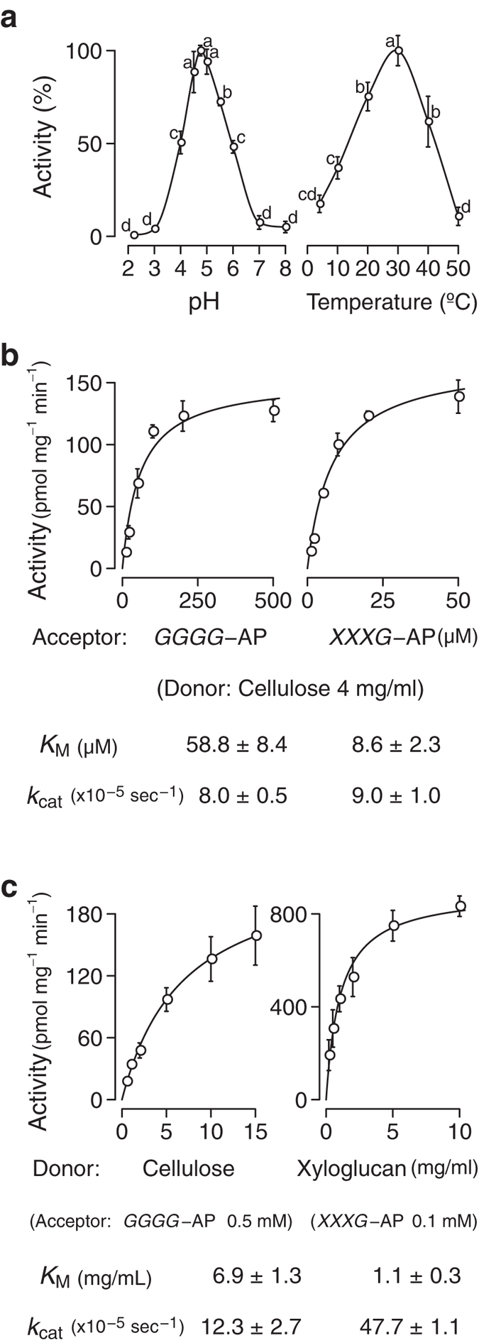 pH and temperature dependence and kinetic parameters of AtXTH3-mediated transglycosylation reaction. ( a ) pH (left) and temperature (right) dependence of AtXTH3-mediated transglycosylation (donor: amorphous cellulose; acceptor: aminopyridyl cellotetraose, GGGG -AP). ( b ) Michaelis constant ( K M ) and turnover number ( k cat ) for acceptor oligosaccharides (left: GGGG -AP; right: XXXG -AP) with amorphous cellulose as the donor substrate. ( c ) Michaelis constant and turnover number for donor substrates (left: cellulose donor and GGGG -AP acceptor; right: <t>xyloglucan</t> donor and XXXG -AP acceptor). The data are presented as the mean ± s.d. from three independent experiments. Different letters in ( a ) denote significant differences as determined by Tukey's test ( p
