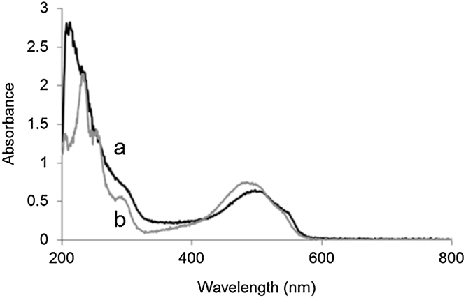 UV–visible spectrum of a) <t>Dox-NP™</t> liposomes in PBS, b) DoxHCl in PBS at the same (40 μg/mL) <t>doxorubicin</t> concentration.