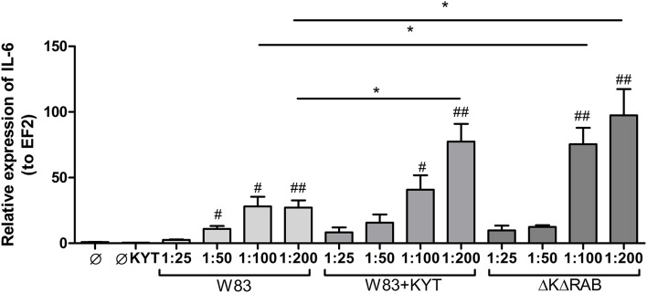 Expression of interleukin 6 in human monocyte-derived dendritic cells in response to Porphyromonas gingivalis infection . Monocyte-derived dendritic cells (moDC) were untreated or exposed to P. gingivalis W83 in the presence or absence of specific protease inhibitors (KYT-1 and KYT-36, each at a concentration of 1 μM) or the isogenic gingipain-null mutant ΔKΔRAB for 2 h. After stimulation, cells were lysed with TRIzol, RNA was isolated and reverse transcriptase PCR was performed. Relative expression of IL-6 was measured by using the Real-Time PCR method. A representative qRT-PCR from three separate experiments performed on moDCs derived from different donors is shown. Data are presented as means ± standard deviations of triplicate assays, and were analyzed with the one-way ANOVA with the Bonferroni post-test correction (# P