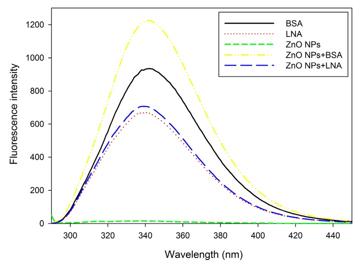 The fluorescence spectra (λ = 280 nm) of bovine serum albumin (BSA), α-linolenic acid (LNA; complexed to BSA; referred as LNA) and ZnO NPs (code: XFI06) suspended in distilled and deionized water (DDW), 0.5% BSA, or 200 µM LNA.