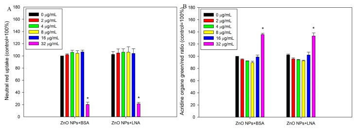 The damage of lysosomes as assessed by neutral red uptake assay ( A ) or acridine orange staining ( B ). HepG2 cells were exposed to various concentrations of ZnO NPs (code: XFI06) with the presence of bovine serum albumin (BSA) or α-linolenic acid (LNA; complexed to BSA; referred to as LNA) for 24 h ( A ) or 3 h ( B ), and neutral red uptake assay ( A ) or acridine orange staining ( B ) were used to indicate the integrity of lysosomes. *, p