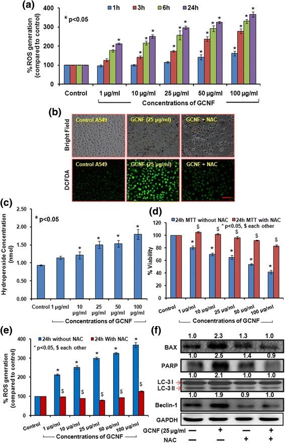 GCNF induced significant dose and time dependent increase in ROS production depicted by the increase in DCFDA fluorescence measured through plate reader ( a ) and respective fluorescence images ( b ). Scale Bar – 300 μm. Per view 100 cells and 4 views per group were analyzed. ( c ) Effect of GCNF on lipid peroxidation (LPO) was monitored compared to control cell. ( d , e ) NAC (ROS scavenger) have significant impact on viability of GCNF exposed A549 cells as well as ROS production in GCNF exposed A549 cells. Values are expressed as mean ± SE of three independent experiment. * p
