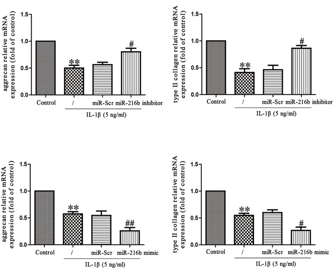 Effects of miR-216 on IL-1β-induced inhibition of aggrecan and type II collagen synthesis in SW1353 cells SW1353 cells were treated with IL-1β (5 ng/ml) for 24 h after transfection with miR-216b mimic or inhibitor. The mRNA levels of aggrecan and type II collagen were determined by qRT-PCR. The data shown are mean ± S.E.M., n =4; ** P