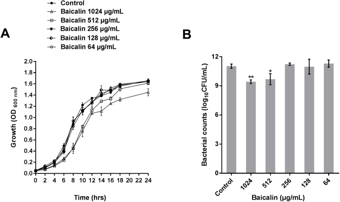 Effects of baicalin on the growth of P . aeruginosa PAO1. Growth curves ( A ) and bacterial colony counts ( B ) of P . aeruginosa PAO1 treated with varying concentrations of baicalin (64–1024 μg/mL) in <t>Luria-Bertani</t> broth at 37°C for 24 h. Experiments were performed in triplicate; the error bars represent the standard error of the OD 600 value for each time point in the growth curves and the standard error for the number of CFUs after 24 h treatment. * and ** indicate P -values