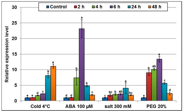 qRT-PCR analysis of AlTMP1 transcripts in A. littoralis plants challenged with various stresses. Two-month-old A. littoralis plants were treated with 300 mM NaCl, 4 °C, 20% PEG 8000 and 100 µM abscisic acid (ABA) for 2, 4, 6, 24 and 48 h. The rRNA18s gene was used as an internal control. Data from qRT-PCR experiments were analyzed according to the 2 −∆∆ C t method. Vertical bars indicate standard deviation calculated from three replicates. Values are mean ± s.e. ( n = 3). Means denoted by the same letter did not differ significantly at p