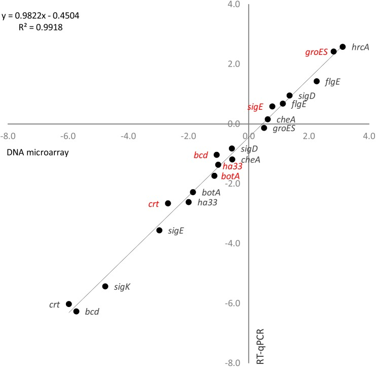 Validation of <t>DNA</t> microarray results using quantitative real-time reverse-transcription PCR (RT-qPCR). Log 2 fold-changes of transcript levels measured with DNA <t>microarrays</t> (x-axis) and RT-qPCR (y-axis) in C . botulinum ATCC 3502 continuous culture 10 min (red) and 42 h (black) after temperature up-shift from 39 to 45°C. 16S rrn transcript levels were used as a normalization reference in the RT-qPCR. Linear regression analysis showed an R 2 correlation value of 0.99 between the microarray and RT-qPCR transcription fold-change results.