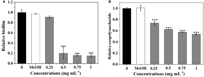 Effects of P. cucumerina extract on biofilm development and exopolysaccharide production. (A) Biofilm development and (B) exopolysaccharide production were quantified after 24 h of incubation by measuring at OD 570 and 490 nm, respectively. Error bars indicated the standard deviations of three measurements. Statistically difference was determined by ANOVA followed by Tukey–Kramer test. *** p