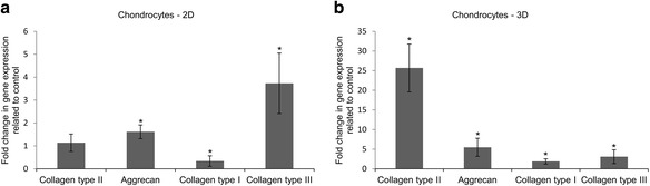 Transcriptional activity of collagen type II, aggrecan, collagen type I, and collagen type III genes expressed as fold change in relation to control (expression = 1) in chondrocytes cultured for 21 days on: a 2D – monolayer, b 3D – PLGA scaffold. Control culture was carried out in growth medium in: a 2D – monolayer, b PLGA scaffold. Growth medium contained inter alia α-MEM medium with 10 % FBS. Chondrogenic medium contained inter alia differentiation factors such as dexamethasone and TGFβ3, ascorbic acid 2-phosphate, ITS + Premix, sodium pyruvate and 2 % FBS. * p