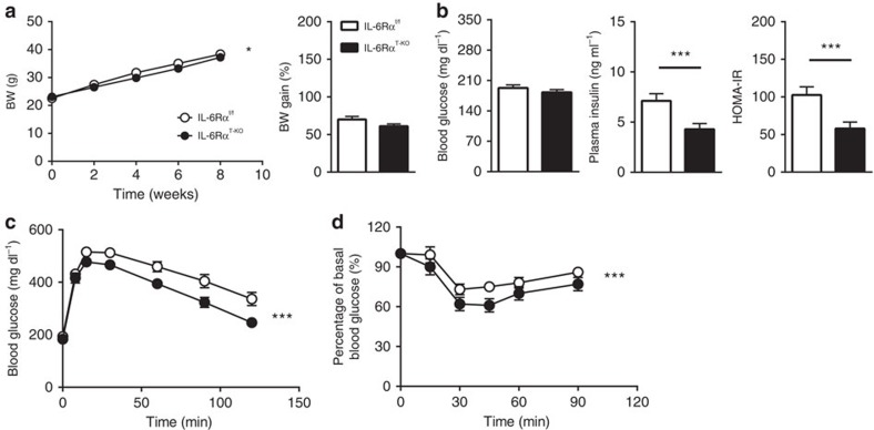 Physiological parameters and metabolic characterization of IL-6Rα T-KO mice (8-week HFD). ( a ) Body weight (BW) curve on HFD and percentage of body weight gain ( n =21 versus 26). ( b ) Fasting (6 h) blood glucose ( n =21 versus 26), plasma insulin and HOMA-IR ( n =18 versus 16). ( c ) Blood glucose concentrations during intraperitoneal glucose tolerance tests (IPGTT) after a 6 h fast ( n =21 versus 26). ( d ) Blood glucose as a percentage of basal value during intraperitoneal insulin tolerance tests (IPITT) after a 2 h fast ( n =15 versus 18). Two-tailed t -tests and two-way analysis of variance (ANOVA) used for statistical analyses (* P
