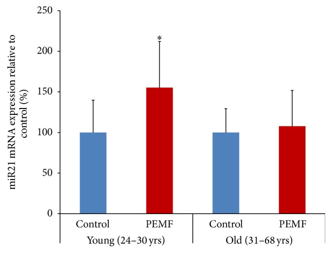 PEMF stimulated expression of miR21-5p in differentiated human osteoblasts. Total RNAs from control or PEMF-treated hBMSCs of females (24 × 2, 27, 29, and 30 years old, n = 5) at day 23 of differentiation or (31, 36, 58, and 68 years old) at day 23 or 33 of differentiation were isolated and subjected to RT-qPCR using the miScript II kit with miScript HiSpec Buffer and miScript SYBR Green PCR Kit. snoR10-1 was used to normalize miR21-5p expression and the expression is shown as a percentage of the relevant control samples. ∗ indicates significant increase compared to control using one-way ANOVA.