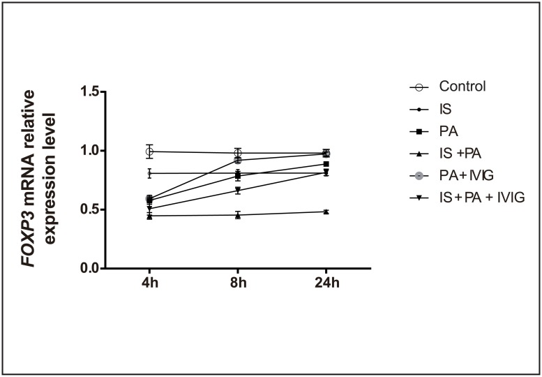 FOXP3 mRNA relative expression level in lung tissue in each group at 4, 8 and 24h. Six groups were studied: Control group, IS group, PA group, IS + PA group, PA + IVIG group and IS + PA + IVIG group. Immunosuppression was induced on day -5, -3 and -1 by intraperitoneal injection of CYP, PA pneumonia was induced on day 0 and IVIG mediated treatment models were immediately established following PA intervention on day 0. The left lung tissue of the mice was used for testing FOXP3 mRNA relative expression by qRT-PCR. qRT-PCR was carried out using a Thermo Fisher PCR kit with FOXP3 and GAPDH primer. FOXP3 mRNA relative expression level was calculated by the 2 (- ΔΔ CT) method. FOXP3 mRNA expression levels in lung tissue in six groups at 4, 8 and 24h were shown.