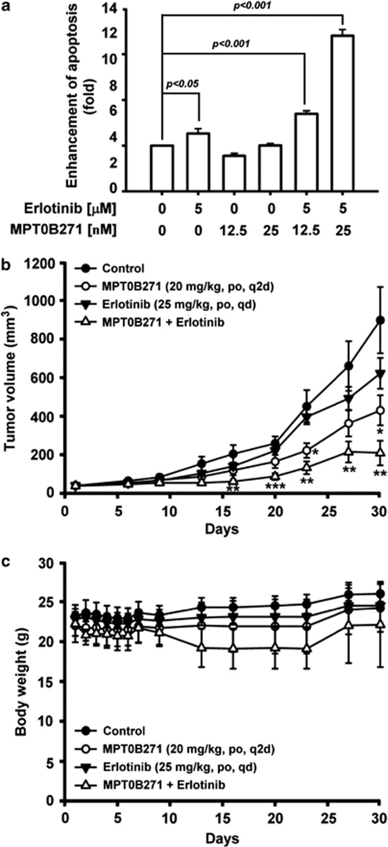 In vitro and in vivo antitumor activity of MPT0B271 in combination with erlotinib. ( a ) A549 cells were treated with erlotinib (5 μ M) in combination with MPT0B271 (0.0125 or 0.025 μ M) for 48 h, and cell apoptosis was measured using the Cell Death ELISA PLUS kit. Data are expressed as the mean±S.E. of at least three independent determinations. ( b ) A549 xenograft model. A549-tumor-bearing nude mice were treated with vehicle, MPT0B271 (20 mg/kg/day by oral gavage q2d), erlotinib (25 mg/kg/day by oral gavage once a day), or MPT0B271 in combination with erlotinib. Tumor was excised when the tumor size reached 1200 mm 3 . ( c ) The body weight of the mice measured daily during the first week and then at the days of administration. * P