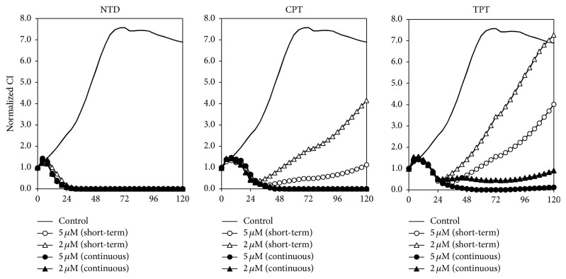 Inhibitory effect of short-term treatment with nitidine (NTD), camptothecin (CPT), or topotecan (TPT) in A549 cells measured using the xCELLigence system. Cell growth was assessed with impedance using the xCELLigence system for A549 cells. Cells were treated with 2 or 5 μ M of each compound after 18 h preculture (0 h). After 2 h of treatment, wells of the short-term group were washed and replaced with complete medium without compound. Cell growth was then monitored continuously for 118 h.