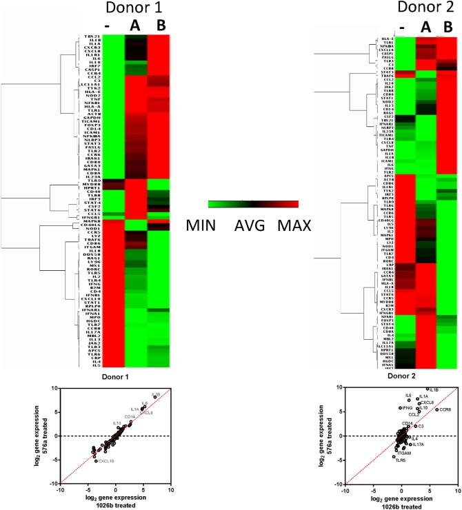 Dissimilar induction of innate and adaptive immunity by Type A and B LPS in human PBMCs. RT 2 qPCR arrays were used to look at differences between Type A and B LPS in their ability to induce innate and adaptive immunity in healthy human derived PBMCs. Heat maps of expression levels of innate and adaptive immune targets from human PBMCs of two donors after 24 h treatment in mock treated (-), Type A LPS (from 1026b) treated (A), and Type B LPS (from 576a) treated (B) PBMCs. Red is the highest fold change in expression and green is the least. Log 2 gene expression scatterplots are shown below the heat-maps.