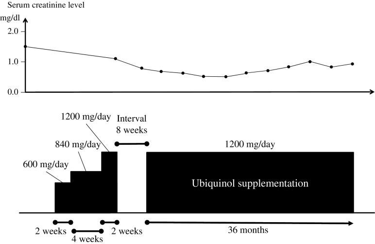 Summary of clinical course with ubiquinol supplementation. After the baseline assessment, the patient was started on ubiquinol at 600 mg/day (given once a day), with the dose increased to 840 mg/day at week 2 and to 1200 mg/day at week 6. The 1200-mg/day dose was maintained until week 8. After an interval of 8 weeks, the patient resumed taking ubiquinol at 1200 mg/day. To date, he remains taking ubiquinol at this same dose for over 3 years. BW body weight, sCre serum creatinine level