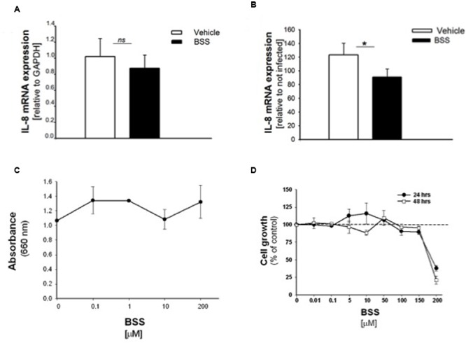 Effect of BSS on IL-8 mRNA, bacterial growth and cell viability in CuFi-1 cells. Cells were treated for 16 h with BSS (100 nM) and infected with PAO1 for further 4 h. IL-8 mRNA expression was measured as indicated in the legend of Figure 2 . (A) Basal IL-8 mRNA expression. Data are expressed as relative to the expression of GAPDH housekeeping gene. (B) PAO1-stimulated mRNA expression. Data are expressed as relative to not infected cells. (C) PAO1 growth. Bacteria were cultured overnight at 37°C in the presence of solvent or ranging doses (0.1– 200 μM) of BSS. Bacterial growth was monitored by absorbance measures at 660 nm. A representative experiment performed in duplicate is shown. (D) Cell viability. CuFi-1 cells were treated with solvent alone or BSS (0.01–200 μM) for 24 and 48 h. Cell viability was recorded by cytometer analysis. Data are expressed as % control (solvent) and are relative to a representative experiment performed in duplicate. Dashed line corresponds to cells treated with solvent alone.