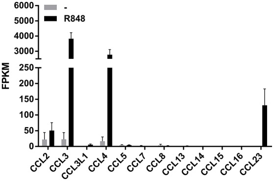 Expression of CCR1-binding chemokine mRNAs in human neutrophils incubated with R848 . Human neutrophils were incubated with or without 5 μM R848 for 24 h, and then total RNA was extracted and processed for RNA-seq experiments. Data are presented as FPKM (fragment per kilobase of exons per million fragments mapped) from two independent experiments (mean ± SEM).
