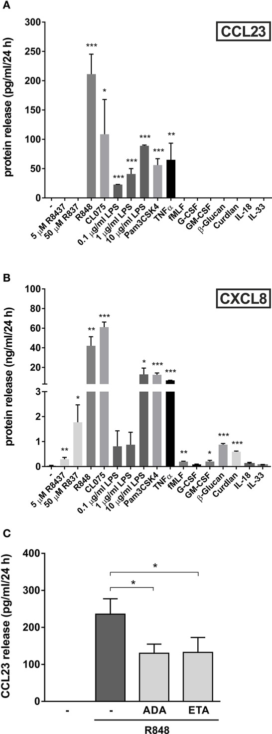 Other agonists, besides R848, trigger the production of CCL23 by human neutrophils . Neutrophils (5 × 10 6 /ml) were cultured with or without 5–50 μM R837, 5 μM R848, 5 μM CL075, 0.1–10 μg/ml LPS, 1 μg/ml Pam3CSK4, 10 ng/ml TNFα, 10 nM fMLF, 10 ng/ml G-CSF, 10 ng/ml GM-CSF, 500 μg/ml β-Glucan, 500 μg/ml Curdlan, 100 ng/ml IL-18, and 100 ng/ml IL-33 for 24 h. Then, extracellular supernatants were collected to evaluate CCL23 (A) and CXCL8 (B) production by ELISA (mean ± SEM, n = 3–5). Asterisks stand for significant increases as compared to untreated cells: * P