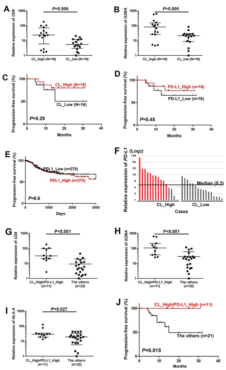 Favorable prognosis in cases with enriched TCRβ clonotypes and high PD-L1 mRNA expression. (A and B) All 32 cases were classified into two groups by the median number of TCRβ clones with > 0.1% frequency (Materials and methods), and compared by mRNA expression of (A) CD8 and (B) <t>GZMA</t> . (C-E) Kaplan-Meier curves of progression-free survival for two groups classified by T cell clonal expansion in our 32 cases (C) and PD-L1 expression in our 32 cases (D) and PD-L1 expression in 540 TCGA cases (E) were evaluated by a log-rank test. Cases were classified by the median of each value. (F) All cases were classified into two groups according to high or low TCRβ clonality by the median value of numbers of TCRβ clones with the frequency of > 0.1% (Materials and methods), and then individual cases in each group were ordered in the relative PD-L1 expression levels (median, 5.3). (G-I) Comparison of mRNA expression of (G) CD8 , (H) GZMA and (I) HLA-A between 'CL_High/PD-L1_High' [cases shown in red in (F)] cases and 'The others'. P-values were calculated by Mann-Whitney test. (J) Kaplan-Meier curves (progression-free survival) of patients by classification of tumors with T cell clonal expansion along with high PD-L1 expression (CL_High/PD-L1_High) and the other cases (The others). P-value was calculated using log-rank test.
