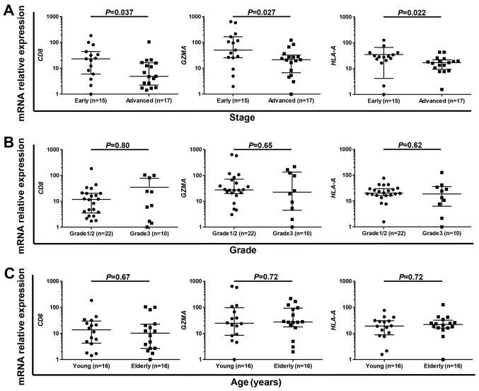 Immune-active status was significantly high in early-stage endometrial cancer. (A-C) Comparison of mRNA expression levels of CD8 , GZMA and HLA-A in early- (stage I/II) and advanced- (stage III/IV) stages (A), in grade 1/2 and grade 3 tumors (B) and in young (≤61 years) and elderly ( > 61 years) patients (C) by Mann-Whitney test.