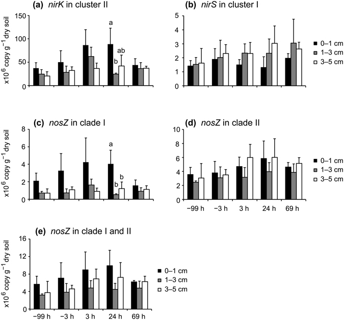 Quantification of the abundance of nirK in cluster II ( a ), nirS in cluster I ( b ), nosZ in clade I ( c ), nosZ in clade II ( d ), and the total quantity of nosZ ( nosZ in clades I and II) ( e ) in soil by qPCR. Error bars represent standard deviations ( n = 3). Different lowercase letters above columns represent significant differences among different soil depths at each sampling time.
