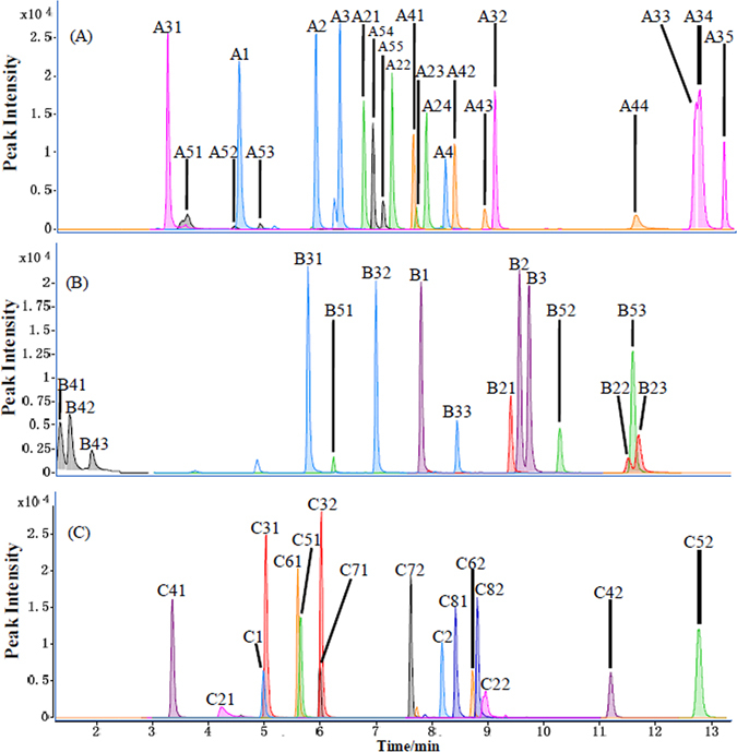 UHPLC-MS/MS chromatograms for some sets of the 5-AIQC-tagged amino analytes having the same pseudomolecular ions (m/z at unit resolution). ( A ) ion m/z 260 (A1: sarcosine; A2: β-alanine; A3: L-alanine; A4: 2-amino-2-methyl-1-propanol); ion m/z 274 (A21: γ-aminobutyric acid; A22: DL-3-aminoisobutyric acid; A23: 2-aminoisobutyric acid; A24: L-2-aminobutyric acid); ion m/z 302 (A31: trans -4-hydroxy-L-proline; A32: 6-aminocaproic acid; A33: L-isoleucine; A34: L-leucine; A35: L-norleucine); ion m/z 324 (A41: (±)-octopamine; A42: dopamine; A43: 3-hydroxyanthranilic acid; A44: 3-aminosalicylic acid); ion m/z 340 (A51: L-cysteic acid; A52: 3-methyl-L-histidine; A53: 1-methyl-L-histidine; A54: (−)-norepinephrine; A55: 5-hydroxydopamine). ( B ) ion m/z 288 (B1: 5-aminovaleric acid; B2: L-valine; B3: L-norvaline); ion m/z 308 (B21: tyramine; B22: 3-aminobenzoic acid; B23: 4-aminobenzoic acid); ion m/z 318 (B31: L-glutamic acid; B32: o-acetyl-L-serine; B33: 4-hydroxy-L-isoleucine); ion m/z 350 (B41: D-mannosamine; B42: D-(+)-glucosamine; B43: D-(+)-galactosamine); ion m/z 373 (B51: asymmetric dimethylarginine; B52: cysteamine; B53: Ala-Leu). ( C ) ion m/z 280 (C1: hypotaurine; C2: 4-aminophenol); ion m/z 282 (C21: histamine; C22: cystathionine); ion m/z 290 (C31: D-homoserine; C32: L-threonine); ion m/z 334 (C41: 1-deoxynojirimycin; C42: DL-ethionine); ion m/z 336 (C51: DL-methionine sulfoxide; C52: DL-phenylalanine); ion m/z 352 (C61: DL-methionine sulfone; C62: L-tyrosine); ion m/z 359 (C71: L-homoarginine; C72: Nα-acetyl-L-lysine); ion m/z 208 (C81: 1,3-diaminopropane; C82: 1,2-diaminopropane).