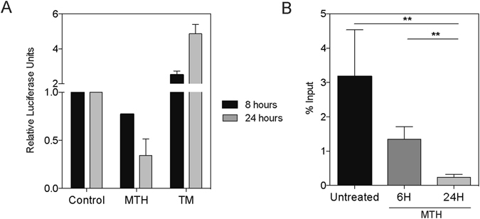 Sp1 downregulation leads to chronic ER stress by deregulating the homeostatic mechanism. Mithramycin treated MIA PaCa-2 cells analyzed for ( A ) ERSE dual-luciferase activity assay from 0–24 hours, and ( B ) ChIP of Sp1 on the Grp78 promoter, from 0–24 hours.