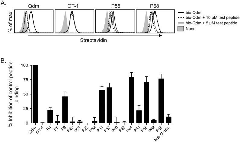 Several HLA-E-binding Mtb peptides can bind to Qa-1. Qa-1 transfected HeLa cells were incubated with 0.5 μM biotinylated-Qdm and either 5 or 10 μM of unlabeled competing peptide. Competition for binding to Qa-1 was determined via flow cytometry of streptavidin-APC staining. (A) Representative histograms of concentration-dependent peptide binding to Qa-1 for Qdm (positive control), OT-1 (negative control), and Mtb peptides P55 P68. (B) Relative peptide binding for 17 Mtb peptides, determined by taking the difference in streptavidin-APC MFI between bio-Qdm alone and bio-Qdm + 10 μM test peptide, normalized to the inhibition of bio-Qdm binding by Qdm. n = 2–4 for each peptide.