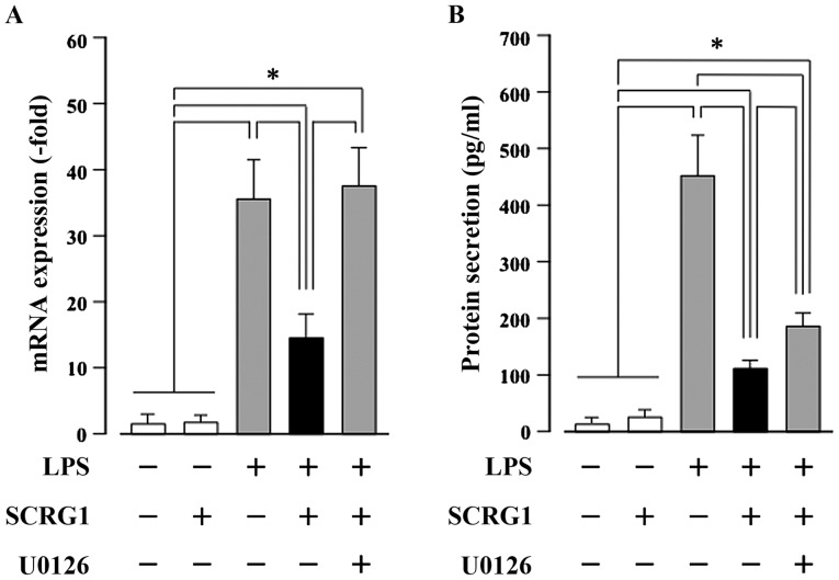 Scrapie responsive gene 1 (SCRG1) suppresses lipopolysaccharide (LPS)-induced CC-chemokine ligand 22 (CCL22) production through the activation of extracellular signal-regulated kinase 1/2 (ERK1/2) in Raw264.7 cells. Raw264.7 cells were stimulated with or without 10 ng/ml LPS, 100 ng/ml rmSCRG1, and 1 mM <t>U0126</t> for either 6 h (A) or 48 h (B). (A) Reverse transcription-quantitative polymerase chain reaction (RT-qPCR) was performed with specific oligonucleotide primers. mRNA expression level of Ccl22 was normalized to glyceraldehyde-3-phosphate dehydrogenase, and the results are expressed as the fold change relative to the unstimulated control. (B) The amount of secreted CCL22 in the culture medium was measured using a sandwich enzyme-linked immunosorbent assay (ELISA) for mouse CCL22. In (A) and (B), data are presented as the means ± SD. *P