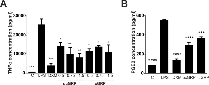 GRP reduces TNFα and PGE2 production in THP-1 MoM cells stimulated with LPS. (A) Differentiated THP-1 MoM cells were treated with 0.5 μg/ml, 0.75 μg/ml and 1.5 μg/ml of purified cGRP and ucGRP proteins for 24 h, followed by exposure to 50 ng/ml LPS for additional 24 h. Cells treated with 2 μM dexamethasone (DXM) were used as a positive anti-inflammatory control, and non-stimulated cells (C) as controls to LPS stimulation. Conditioned cell culture media were collected and used to determine TNFα accumulation by ELISA assays. Data are presented as means (n = 3) ± standard error of triplicates of two independent experiments. Ordinary one-way ANOVA was used and multiple comparisons were achieved with Dunnett's test. Statistical significance was defined as P