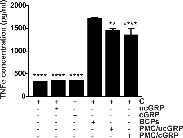 Coating of BCPs with GRP reduces TNFα production in THP-1 MoM when compared with naked crystals. Differentiated THP-1 MoM cells were treated with 100 μg/ml of BCP crystals or BCPs-coated with cGRP/ucGRP (PMC/cGRP; PMC/ucGRP) proteins for 24 h, and non-stimulated cells were used as control (C). Control non-stimulated cells were also treated with 1.5 μg/ml of cGRP/ucGRP proteins for comparison. Conditioned media were collected and used to determine TNFα accumulation through ELISA assays. Data are presented as means (n = 3) ± standard error of triplicates of two independent experiments. Ordinary one-way ANOVA was used and multiple comparisons were achieved with Dunnett's test. Statistical significance was defined as P