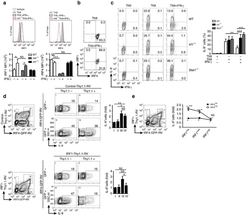 IRF1 limits IRF4-driven IL-9 production dose-dependently. ( a – c ) Naive CD44 − CD62L + CD4 + T cells were isolated from WT, Irf4 −/− , Irf1 −/− or Stat1 −/− mice and then treated under Th9 (TGF-β and IL-4) or Th0 (without skewing cytokines) conditions with/without IFN-γ as indicated. ( a , b ) After resting and reculture under Th9 conditions for 2 days, intracellular flow cytometric analysis for IRF1 and IRF4 were performed. Bars give geometric mean of fluorescence intensity (MFI). ( c ) Cells were restimulated and then IL-9 and IFN-γ production was detected by flow cytometry, bars to the right give mean of IL-9 + T cells. ( d , e ) Irf4 −/− CD4 + T cells were isolated, activated under Th0 condition overnight and then spin-infected with retroviruses as indicated: IRF4-GFP-RV, control-Thy1.1-RV, and IRF1-Thy1.1-RV. Thereafter, cells were cultured under Th9 conditions for 2 days, rested for 3 days and recultured under Th9 conditions for additional 2 days. Four subsets (I–IV) were selected for analysis of IL-9 production. Bars to the right show fold induction of IL-9 + T cells relative to GFP − Thy.1.1 − cells (subset I). ( e ) Six subsets (a through f) expressing increasing levels of GFP and Thy1.1 were selected for analysis of IL-9 production (left panel). Dot plot to the left is representative for four independent experiments. Graph to the right shows fold induction of IL-9 + T cells relative to GFP − Thy1.1 − cells (subset a) combined from four independent experiments. Histogram and contour-plots are representative of two ( a , b ), three ( c ) or four ( d , e ) independent experiments. Bars show mean±s.d. from combined two ( a , b ), three ( c ) or four ( d , e ) experiments. * P