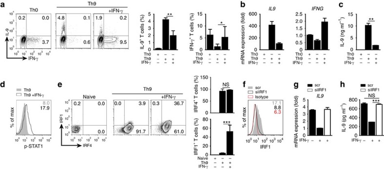 IFN-γ/STAT1-induced IRF1 suppresses IL-9 production in human Th9 cells. Naive CD4 + CD25 − CD45RA + CD45RO − T cells were isolated from human PBMCs and cultured under Th0 or Th9 conditions in the presence or absence of human IFN-γ as indicated. ( a ) Intracellular staining for IL-9 and IFN-γ after 3 days of culture (bars to the right give mean±s.d. of three independent experiments). ( b ) Expression of IL9 and IFNG mRNA on day 2 in Th0 and Th9 cells; results were normalized to 18S and are presented relative to Th0 cells. ( c ) ELISA of IL-9 in supernatants of Th0 and Th9 cultures after 3 days. ( d ) Phospho-flow for p-STAT1 in Th9 cells with or without IFN-γ treatment, day 2 of culture (values show mean fluoresence intensity). ( e ) Intracellular staining for IRF1 and IRF4, day 2 of culture (bars to the right give mean±s.d. of three independent experiments). ( f – h ) Human naive CD4 + CD25 − CD45RA + CD45RO − T cells were activated under Th0 condition for 16 h, then transfected with scrambled (scr) or IRF1-specific siRNA (siIRF1) and then cultured for further 72 h under Th9 conditions with/without IFN-γ. ( f ) Intracellular staining of IRF1 in scr- or siIRF1-transfected cells 24 h post transfection upon culture under Th9 conditions with IFN-γ. ( g ) Expression of IL9 mRNA in transfected cells at 48 h post transfection; results were normalized to 18S and are presented relative to Th9 cells treated with scr siRNA and IFN-γ. ( h ) ELISA of IL-9 in supernatants of transfected cells 72 h post transfection. ( a – h ) Data are representative of three independent experiments with different donors; * P