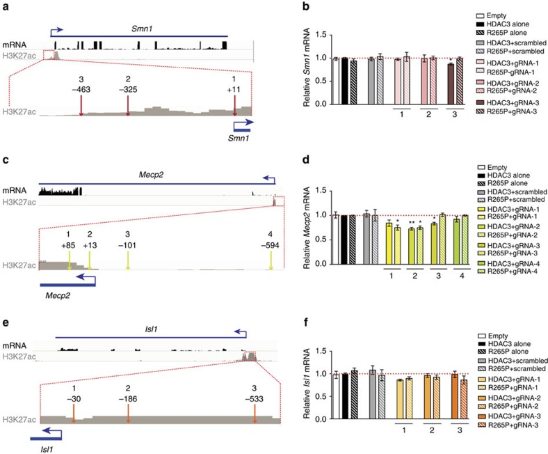 Positional effects of <t>dCas9-HDAC3</t> on gene expression at three different loci. ( a ) RNA-seq and H3K27ac ChIP-seq reads mapped to a region encompassing the murine Smn1 gene. Magnified insets of H3K27ac enrichment at the Smn1 promoter locus with approximate locations of each gRNA-targeted site are displayed below. ( b ) Quantitative RT–PCR measurements of relative mRNA levels of Smn1 from N2a cells co-transfected with each gRNA and the indicated dCas9 proteins (relative to cells transfected with dCas9-HDAC3 alone; red dashed line) * P