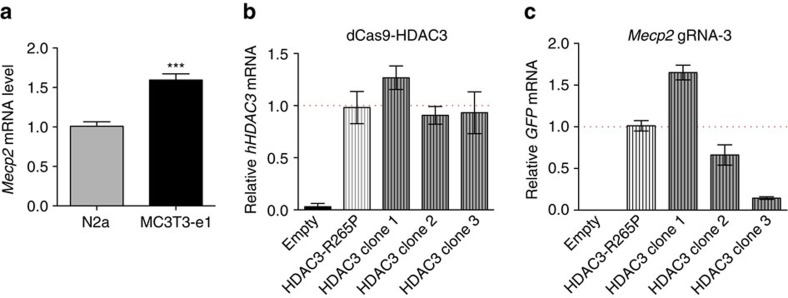 Generation of dCas9-HDAC3 and dCas9-HDAC3 R265P MC3T3-e1 clonal cell lines targeting the Mecp2 promoter. ( a ) RT–PCR analysis of Mecp2 expression in MC3T3-e1 cells relative to that of N2a cells. *** P