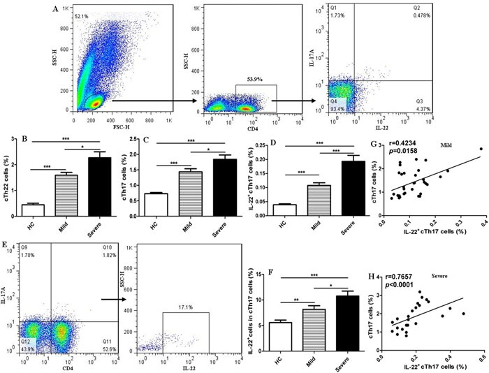 Increased frequencies of cTh22 and cTh17 cells in human CD4 + T cells of peripheral blood from patients with EV71-associated HFMD Human peripheral blood mononuclear cells (PBMCs) from 32 mild and 24 severe patients with EV71-associated HFMD and 46 healthy controls (HC) were isolated and stained with labeled antibodies and analyzed by flow cytometry as described in the Methods section. A . The cells were gated initially on lymphocytes and then on CD4 + T cells, circulating IL-22 + IL-17A − CD4 + Th22 (cTh22) cells, circulating IL-17A + CD4 + Th17 (cTh17) cells, and IL-22 + IL-17A + CD4 + T (IL-22 + cTh17)cells in the total number of CD4 + T cells. B .- D . The analysis of the percentages of cTh22 cells, cTh17 cells and IL-22 + cTh17 cells in CD4 + T cells from HC and mild and severe patients. E .- F . The proportion of circulating IL-22 + cells in cTh17 cells. G .- H . The correlation of cTh17 cells and IL-22 + cTh17 cells in mild and severe cases. *, p