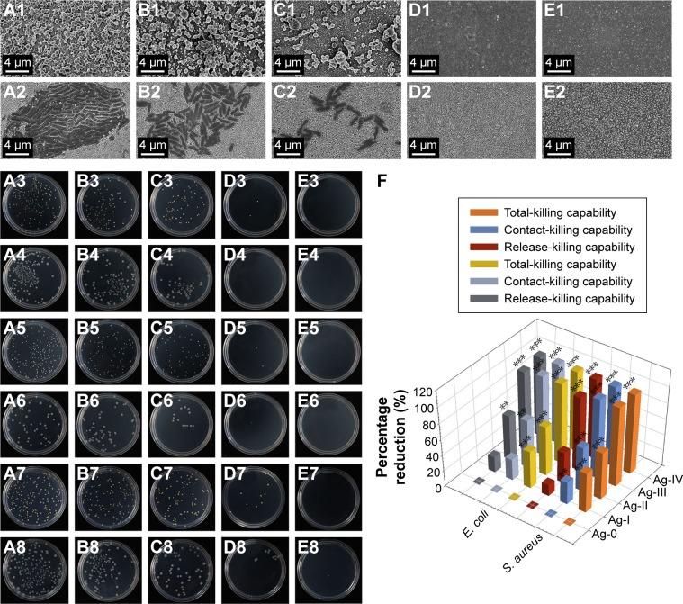 ( A1 – E2 ) SEM images of bacteria adhered on the deposited coatings. ( A3 – E4 ) Optical images of re-cultivated colonies from the antibacterial test of the coatings after 20-hour incubation. ( A5 – E6 ) Optical images of re-cultivated colonies from the anti-biofilm test after 20-hour incubation. ( A7 – E8 ) Optical images of re-cultivated colonies from the antibacterial test of the released nanoparticles after 20-hour incubation. (1, 3, 5, and 7: Staphylococcus aureus ; 2, 4, 6, and 8: Escherichia coli ; A : Ag-0, B : Ag-I, C : Ag-II, D : Ag-III, and E : Ag-IV). ( F ) The percentage reduction of antibacterial test (n=3; ** P