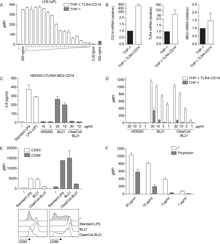 Use of THP-1 TLR4-CD14 NF-κB-eGFP reporter cells for the detection of microbial contaminations in recombinant protein preparations. (A) THP-1 TLR4-CD14 NF-κB-eGFP reporter cells were incubated with the indicated serial dilutions of ultrapure LPS for 24 h. NF-κB-driven eGFP expression was assessed by flow cytometry. Bar graphs show geometric mean of fluorescence intensity (gMFI). eGFP expression of the parental THP-1 reporter cells treated with 300 ng/ml ultrapure LPS is shown for comparison (grey bar). (B) mRNA expression of TLR4, CD14 and MD2 was measured in parental and TLR4-CD14 THP-1 reporter cells by real-time qPCR. Data are presented as mean ± SEM of expression values normalized against the housekeeping gene GAPDH (n = 4). (C) Recombinant human split product C4dg produced in three different expression systems (HEK293-6E, standard E . coli BL21 and E . coli ClearColi BL21) was tested for TLR4-agonist contaminations using HEK293 hTLR4A-MD2-CD14 cells. Following 24 h of incubation the IL-8 content in the culture supernatants was measured by ELISA. (D) Parental and TLR4-CD14 THP-1 reporters were incubated with the protein preparations described in (C) and NF-κB-driven eGFP expression was assessed by flow cytometry 24 h later. Bar graphs show geometric mean of fluorescence intensity (gMFI). Mean and SE were calculated from duplicates of four independently performed experiments (n = 4) (E) Immature human moDCs were incubated with standard LPS, E . coli BL21 or E . coli ClearColi BL21 expressed C4dg protein at the indicated concentrations for 24 h or were left untreated. Expression of maturation markers CD83 and CD86 was assessed by flow cytometry. (F) E . coli ClearColi BL21-expressed C4dg protein was subjected to a single round of bulk chromatography using a polymyxin resin (see Material and Methods ). Samples before and after chromatography were tested using the THP-1 TLR4-CD14 reporters. Mean and SE were calculated from duplicates of four independently performed 