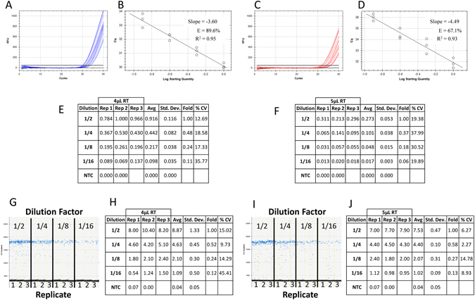 Effect of consistent sample contamination between identical DNA dilutions for ddPCR and qPCR technologies. Four reactions of 50 µL were prepared in triplicate from 1/2 serial dilutions of synthetic DNA in a background of either 10 µL ( A ) or 12.5 µL ( B ) of 1X reverse transcription (RT) mix with primers and ddPCR EvaGreen supermix. Each reaction mix was split for quantification in qPCR and ddPCR (20 µL for each platform containing either 4 µL or 5 µL of contaminating RT mix) and run on a single plate for each platform. Amplification traces ( A and C ), standard curves ( B and D ) and tabulated relative fold difference (ΔCq) results ( E and F ) were generated for qPCR. The ddPCR amplitude plots ( G and I ) and tabulated absolute concentration data ( H and J ) from the same reactions supplemented with 4 uL ( A,B,E,G,H ) and 5 uL ( C,D,F,I,J ) of RT mix were produced. NTC: No Template Control; Dilution: Dilution factor of DNA samples; Rep: Replicate number; Avg: Average of the replicates; Std. Dev.: Standard Deviation between the replicates; % CV: % Coefficient of Variance (Std. Dev./Avg*100).
