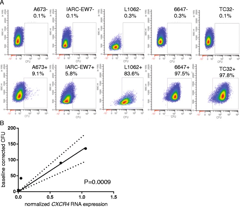 Semi-quantitative detection of MSAP-Ac-TZ14011 in EWS cell lines correlated significantly with CXCR4 RNA expression levels. a Cells of the EWS cell lines A673, IARC-EW7, L1062, 6647 and TC32 were harvested and stained without ( upper graphs ) or with ( lower graphs ) MSAP-Ac-TZ14011. Fluorescence was detected at 710–40 nm. The calculated percentage of positive cells is indicated in each panel. b The baseline corrected geometric mean cytometry fluorescence intensities (GFI) detected after MSAP-Ac-TZ14011 staining of the in ( a ) described EWS cell lines were correlated to the previous determined CXCR4 RNA expression levels (x-axis). Linear regression analysis demonstrated a significant correlation between the by MSAP-Ac-TZ14011 detected CXCR4 levels and RNA expression levels ( P -value and 95% certainty borders are displaced). Both figures are representatives ( n = 3)